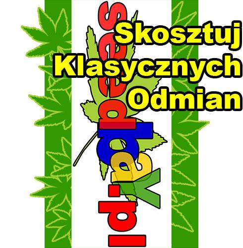 nasiona marihuany, nasiona konopi, nasiona cannabis, sklep