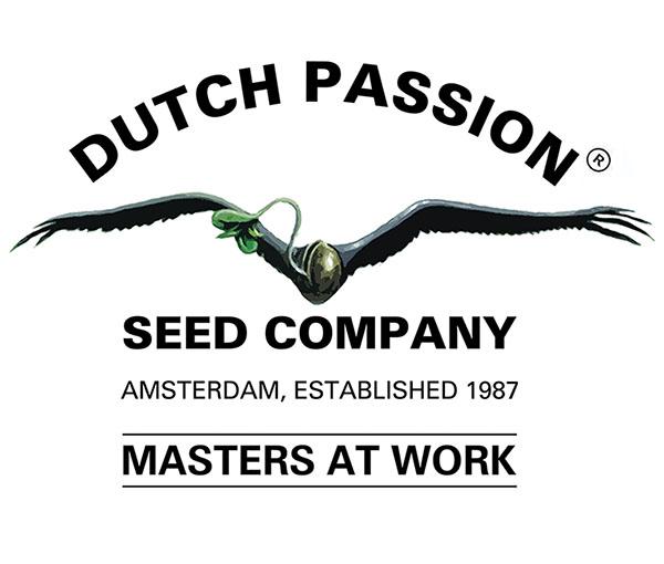 opinie o producencie nasion cannabis dutch passion