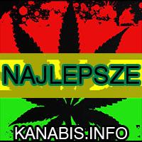 opinie, najlepsze, sklepy, producenci, nasion marihuany, konopi